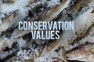 Conservation Values